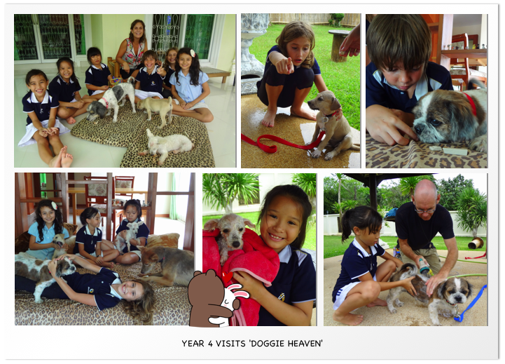 Year 4 visits Doggie Heaven2