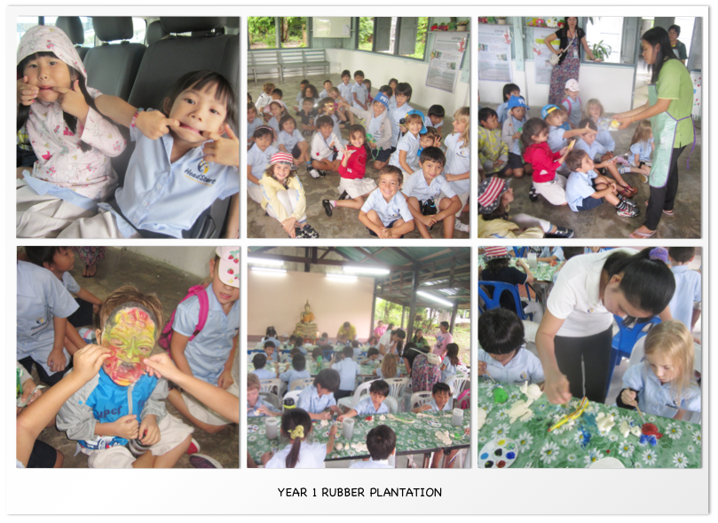 Year 1 Rubber Plantation