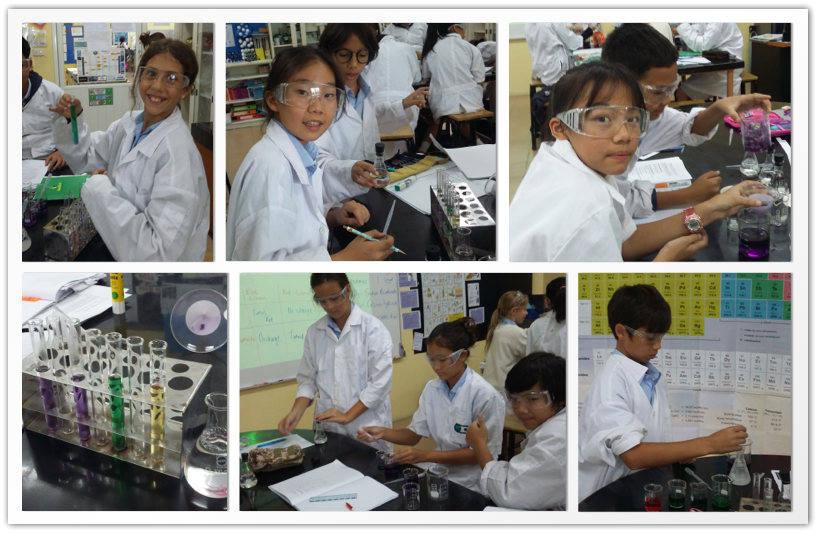 7A Scientists in Action