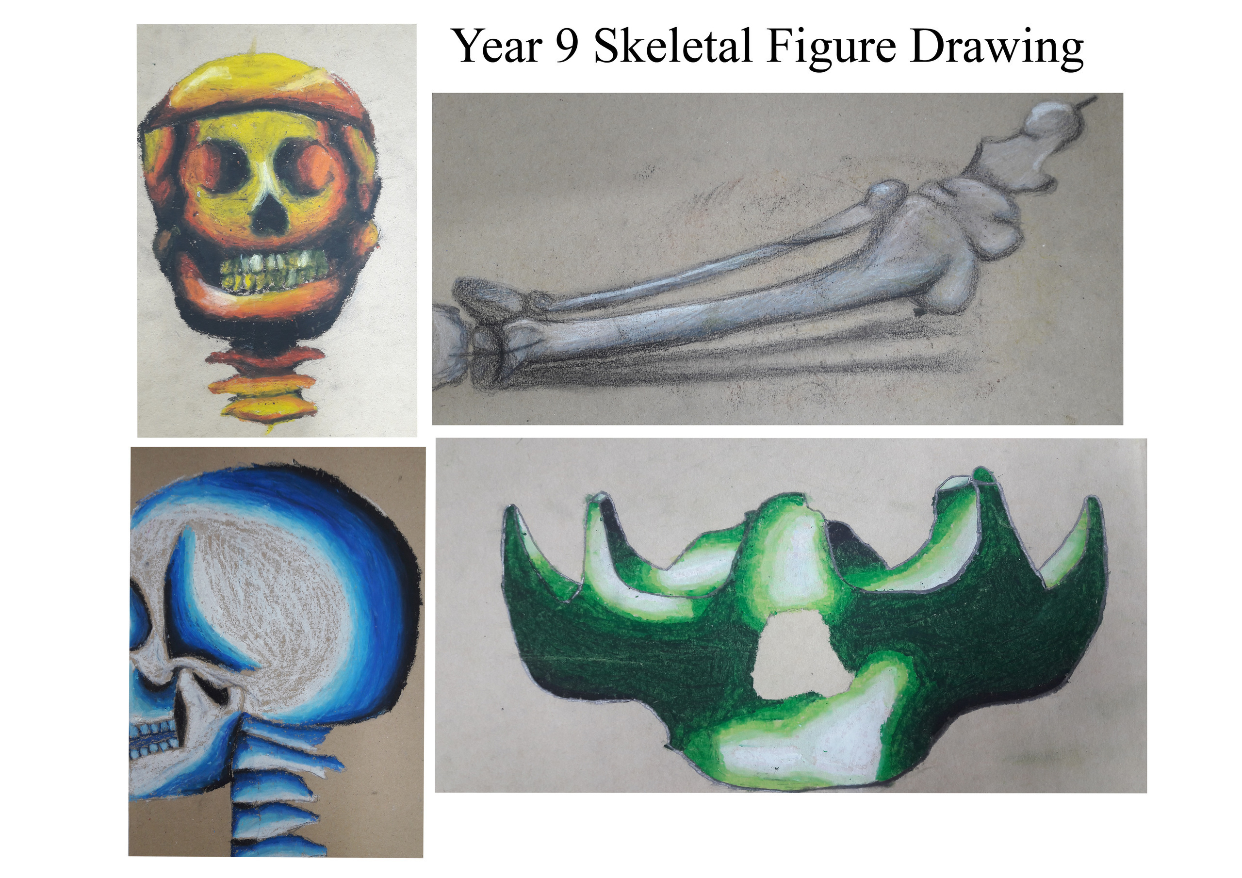 Year 9 Oil pastel skeleton drawings copy