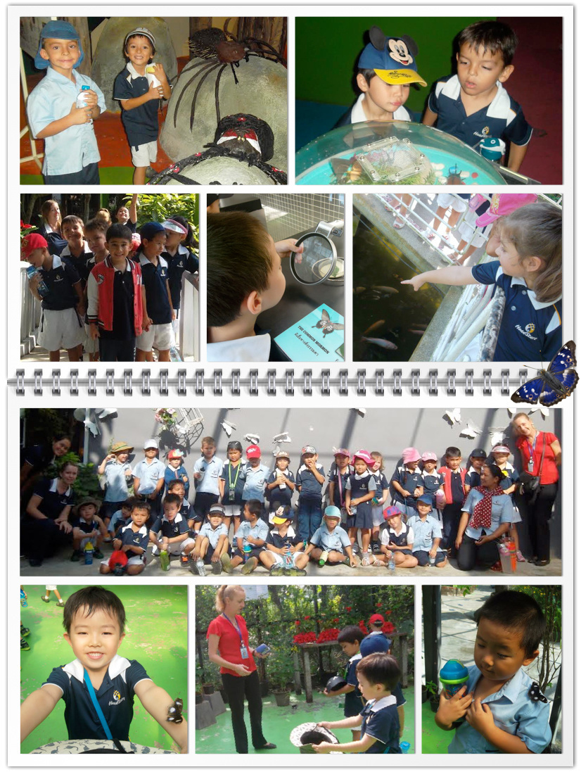 Reception visits the Butterfly garden
